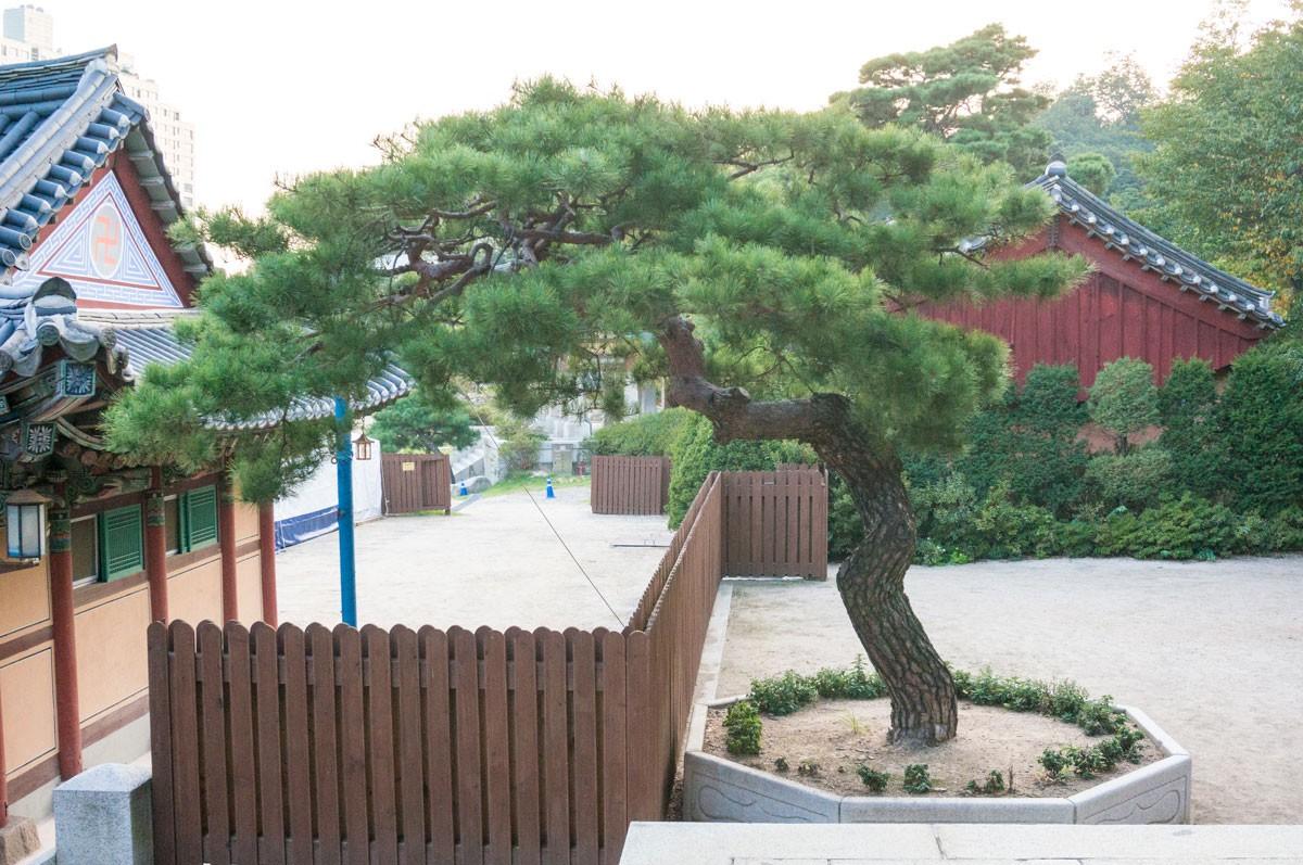 150921_Seoul_1239
