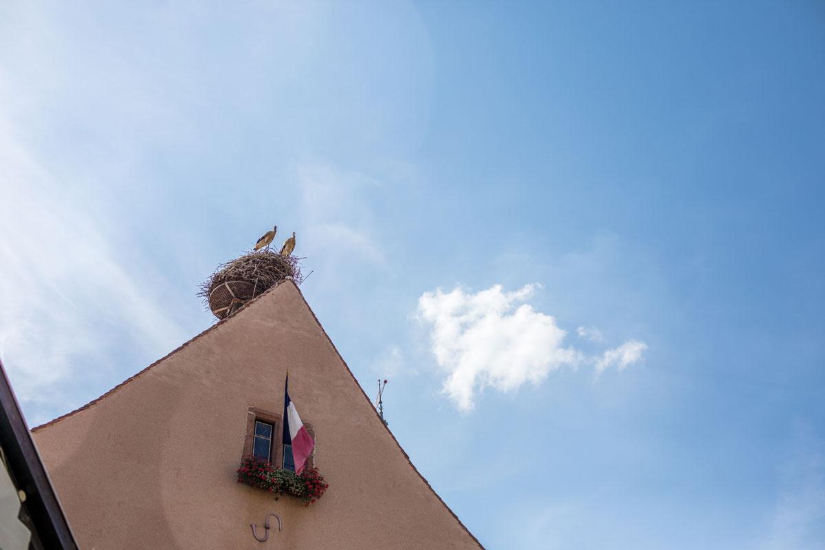 Ninaah Bulles, Eguisheim, voyage, alsace, tourisme, france, village, conte de fée